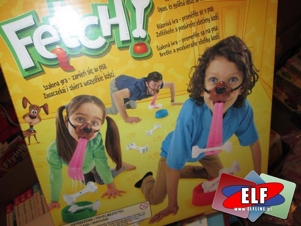 Fetch, Gra, Gry