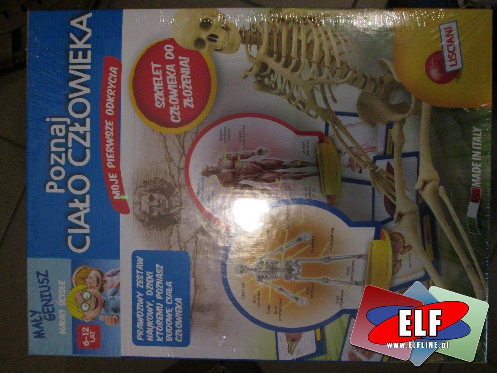 Ciało Człowieka, Zabawka edukacyjna, Zabawki Edukacyjne, Gra edukacyjna, gry edukacyjne