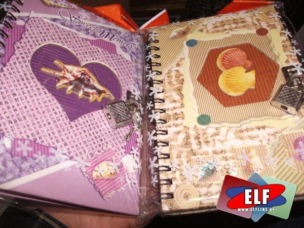 Pamiętnik, pamiętniki