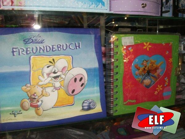 Pamiętniki, pamiętnik