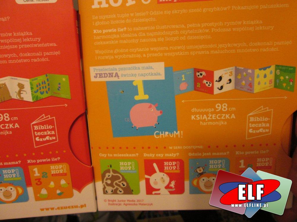 Hop Hop, Kto powie ile?, Duży czy mały?, Gdzie jest Mama?, Czy tu mieszkam? i inne książki edukacyjne, Książka edukacyjna