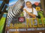Książka edukacyjna, Śladami Neli, Ciekawe książki edukacyjne