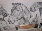 Szkicownik z ołówkami, zestaw do szkicowania, szkicuj według liczb