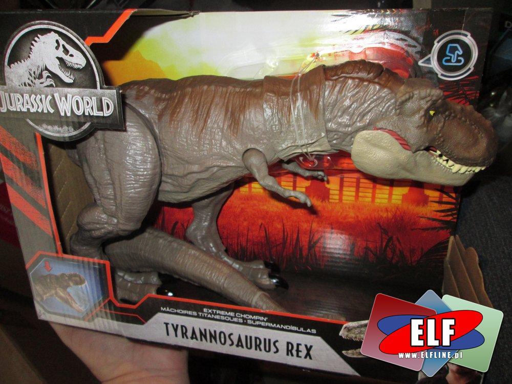 Jurrasic World, Tyranosaurus Rex, Carnotaurus, Dinozaur, Dinozaury