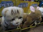 Everything Pets, Maskotki, Pluszaki, Zwierzątka, Pieski, Kotki i inne zwierzątka, Maskotka, Pluszak