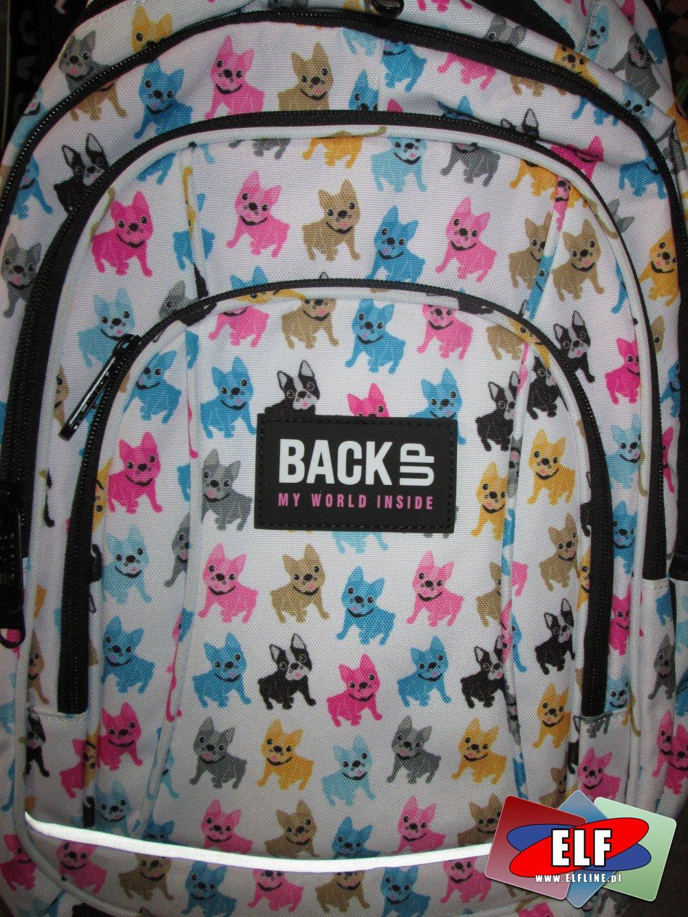 Plecak szkolny, Plecaki szkolne, tornister, tornistry różne dla ucznia
