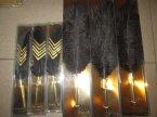 Incood, Długopis w kształcie pióra, długopisy