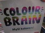 Gra Colour Brain, Myśl kolorem!, Towarzyska gra, Gry