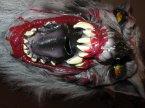 Maska wilka z kłami, maski, wilkołak