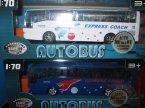 Bus-G, autobus, autobusy, samochód, samochody, zabawka, zabawki