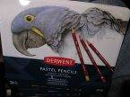 Derwent, Pastel Pencils, Pastelowe Ołówki, Ołówek Pastelowy Derwent, Pastel Pencils, Pastelowe Ołówki, Ołówek Pastelowy