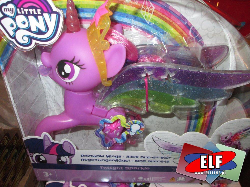 My Little Pony, kucyk, konik