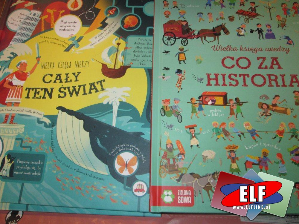 Zielona Sowa, Książeczka dla dzieci, książki dla dzieci, książka, cały ten świat, co za historia, namierz to, kosmiczny labirynt, bug