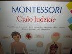 Gra Montessori, Ciało Ludzkie, Gry edukacyjne, Gra edukacyjna Gra Montessori, Ciało Ludzkie, Gry edukacyjne, Gra edukacyjna